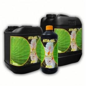 ATA-XL 5L