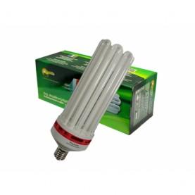 Phytolite CFL 200W Agro GreenPower 2100K - Vegetativa E Fioritura- Lampada Coltivazione Indoor - Basso conumo