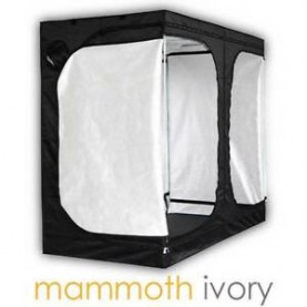 MAMMOTH IVORY 240L...