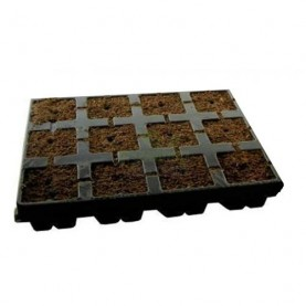 EAZY PLUG VASSOIO 12 CUBI 3,5x3,5x4cm